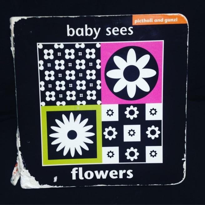 babysees